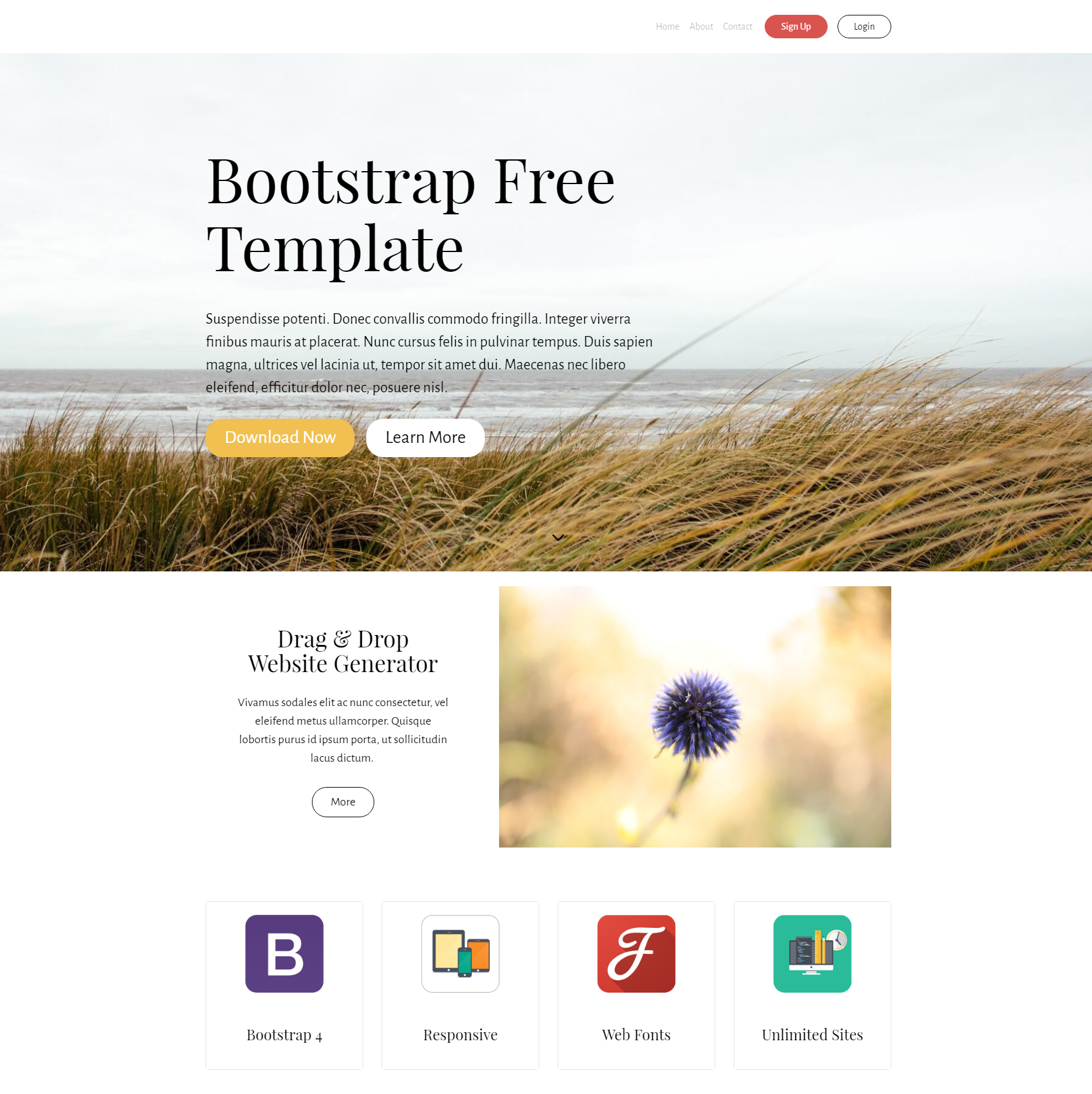 CSS3 Bootstrap PurityM Templates